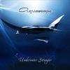 Couverture de l'album Underwater Stranger
