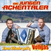 Cover of the album Zwoa Briader geb'n Vollgas
