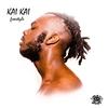 Couverture de l'album Kai Kai (Freestyle) - Single