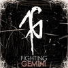 Cover of the album Fighting Gemini