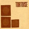 Couverture de l'album Tortoise