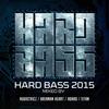 Couverture de l'album Hard Bass 2015