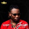 Cover of the album Jaiye - Single