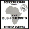 Cover of the album Strictly Dubwise