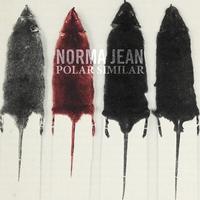 Couverture du titre Polar Similar