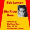 Cover of the album Big River Rose