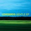 Couverture de l'album Gentle - EP