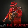Couverture de l'album The Journey