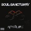Couverture de l'album Afterlife