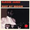 Couverture de l'album Dust My Broom