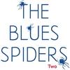 Couverture de l'album Blues Spiders 2