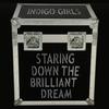 Couverture de l'album Staring Down the Brilliant Dream (Live)