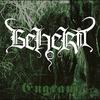 Cover of the album Engram