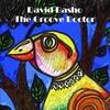 Couverture de l'album The Groove Doctor