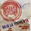 Cover of the album Bajo la Tormenta - Single
