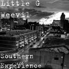 Cover of the album Southern Experience