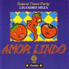 Cover of the album Amor Lindo - Tropical Dance Party