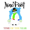 Couverture de l'album Time of the Year