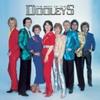 Couverture de l'album The Best of The Dooleys