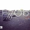 Couverture de l'album HVOB