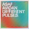 Couverture de l'album Different Pulses