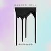 Couverture de l'album Damned Soul