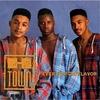 Cover of the album Fever for da Flavor
