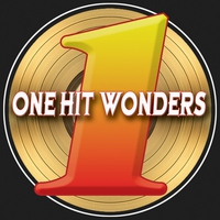 Couverture du titre One Hit Wonders (Re-Recorded Versions)