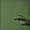 Cover of the album Alles Wat Ze Doet - EP
