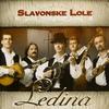 Couverture de l'album Ledina