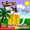 Couverture de l'album So geht Malle (20 Stunden saufen) - Single