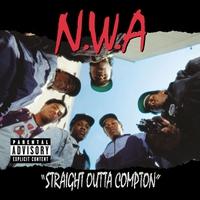 Couverture du titre Straight Outta Compton