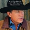 Cover of the album Troubadour