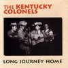 Cover of the album Long Journey Home