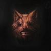 Couverture de l'album The Seer