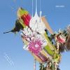Couverture de l'album Constant Spring