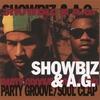 Couverture de l'album Party Groove / Soul Clap