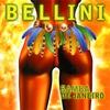 Couverture de l'album Samba de Janeiro
