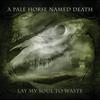 Couverture de l'album Lay My Soul To Waste