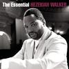 Couverture de l'album The Essential Hezekiah Walker
