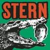 Couverture de l'album Stern