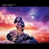 Couverture de l'album Ape to Angel