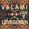 Cover of the album Valami Van A Levegőben - Single