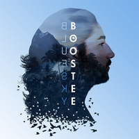 Cover of the track Bluesky
