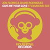 Cover of the album Give Me Your Love (feat. Diamond Sue) - Single