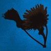 Cover of the album Slug