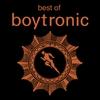 Couverture de l'album Best of Boytronic