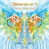 Cover of the album TransAddendum