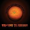 Couverture de l'album Welcome to Chicago: The Acid Anthology