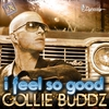 Couverture de l'album I Feel So Good - Single